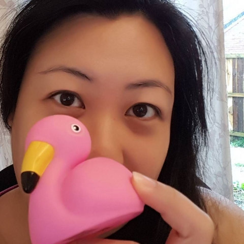 Flamingo Duck Selfie (18)